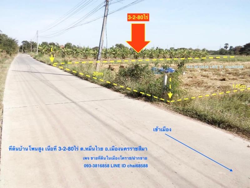 For SaleLandKorat KhaoYai Pak Chong : Land for sale, Baan Phon Sung 3-2-80 rai, Muen Wai Subdistrict, Mueang Nakhon Ratchasima District