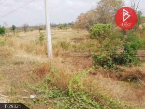 For SaleLandKorat KhaoYai Pak Chong : Land for sale, area 20 rai 2 ngan, Golden Phra Nakhon Ratchasima.