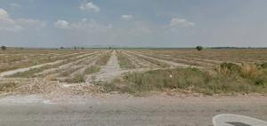 ขายที่ดินกาญจนบุรี : ขายที่ดิน 227 ไร่ราคาโควิด ห้วยกระเจา แหล่งน้ำพุน้ำแร่ธรรมชาติ จ. กาญจนบุรี เหมาะปลูกพืช ทำโรงเรือนเลี้ยงสัตว์