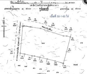 For SaleLandNakhon Sawan : Land for sale 50 rai 1 ngan 60 square meters Nong Bua Nakhon Sawan near the intersection of Nong Bua. Next to highway number 11