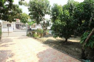 For SaleHouseBang kae, Phetkasem : 2-storey detached house for sale, Phutthamonthon Sai 2 Road, Soi 11, size 80 sq m, only 3.99 million, Baan Bang Phai Thawi Watthana