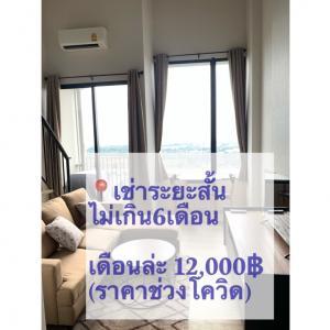 For RentCondoNawamin, Ramindra : Condo for rent 10,000฿ per mth  ,high ceiling4.2m, Blossom Condo near Fashion Island Mall, contract at least 6mth