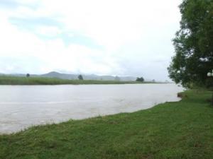 ขายที่ดินเชียงใหม่-เชียงราย : ขายที่ดินแปลงงาม หน้าแม่น้ำ หลังภูเขา ติดแม่น้ำอิง จ.เชียงราย แปลงสวยเกินบรรยายค่ะ หลีกหนีจากความวุ่นวายสู่อ้อมกอดธรรมชาติ ทางภาคเหนือสุดประเทศไทย ทำเลดี ถูกตามหลักฮวงจุ้ย
