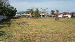 For SaleLandNakhon Pathom, Phutthamonthon, Salaya : Land for sale Phutthamonthon Sai 2