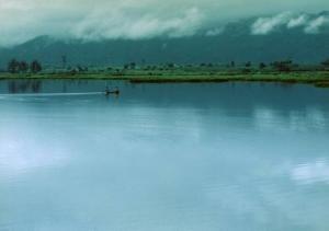 ขายที่ดินเชียงราย : ขายที่ดิน 383 ไร่ ทำเลดี  ติดแม่น้ำอิง ต.ต้า อ.ขุนตาล จ.เชียงราย