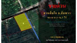 For SaleLandSamut Songkhram : Sell pomelo orchard, Amphawa district, cheap, beautiful plot, next to Lam Kradong