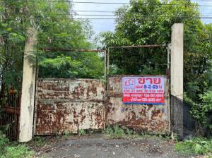 For SaleLandRangsit, Thammasat, Patumtani : Land for sale Khlong 9, Rangsit-Nakhon Nayok. Nong Suea, Pathum Thani, area 9-2-65 rai