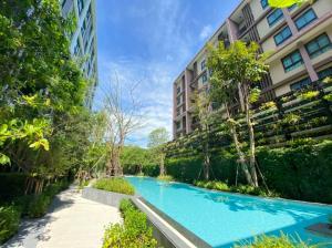 For RentCondoPhuket, Patong : Brand new condo for Rent
