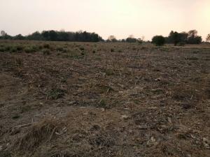 ขายที่ดินนครสวรรค์ : ขายที่ดิน เหมาะแก่การทำการเกษตร เขตพื้นที่ตาคลี นครสวรรค์