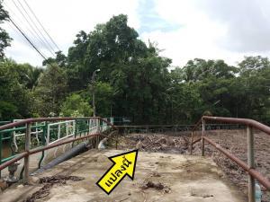 For SaleLandRathburana, Suksawat : ขายที่ดิน บางกระเจ้า-บางกอบัว  ใกล้ตลาดน้ำบางน้ำผึ้ง Ref. A01201002