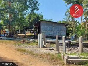 For SaleLandSukhothai : Land for sale, area 12 rai 2 ngan 61.0 square meters, Si Satchanalai, Sukhothai.