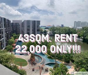 For RentCondoOnnut, Udomsuk : Kawa Haus For RENT 43sq.m. The Most Beautiful position!!! ตำแหน่งที่สวยที่สุดของโครงการ 📲Tel/Line: K.Bo 094-1624424