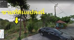 For SaleLandLadkrabang, Suwannaphum Airport : ขายที่ดิน ติดถนนเมน ซอยลาดกระบัง38 Ref. A01191101