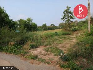 For SaleLandChachoengsao : Land for sale in the area of 3 rai 48.0 square meters, Phanomsarakham, Chachoengsao.