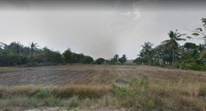 For SaleLandRatchaburi : ขายที่ดิน 22 ไร่เศษ ตำบลหนองปลาหมอ อำเภอบ้านโป่ง จังหวัดราชบุรี Ref. A01181104
