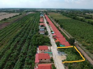 For SaleLandSaraburi : Land for sale in Nong Khae District