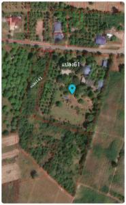 ขายที่ดินราชบุรี : ขายที่ดิน สวนมะม่วง บ้านชั้นเดียว ตำบลทุ่งหลวง อำเภอปากท่อ จังหวัดราชบุรี