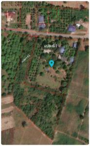 For SaleLandRatchaburi : Land for sale, Tung luang, PakTor, Ratchaburi