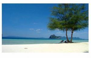 For SaleLandKrabi : Urgent sale of land on the sea, beautiful plot, Koh Ngai, Krabi, very beautiful, almost 40 rai, beautiful.