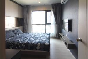 For RentCondoOnnut, Udomsuk : Nice room, nice room, project Life Sukhumvit 48 (Life Sukhumvit 48)