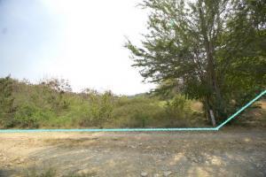 ขายที่ดินอยุธยา สุพรรณบุรี : ขาย ที่ดิน บ่อโพง นครหลวง อยุธยา ติดถนน และ ทางสาธารณะฯ