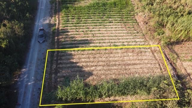 For SaleLandNakhon Pathom, Phutthamonthon, Salaya : Land for sale, beautiful plot, Thung Bua Subdistrict, Kamphaeng Saen District, Nakhon Pathom Province, near Kasetsart University, Kamphaeng Saen