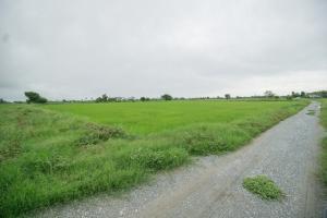 For SaleLandSuphan Buri : Land for sale in Sa Kaeo Subdistrict, Muang District, Suphanburi Province.