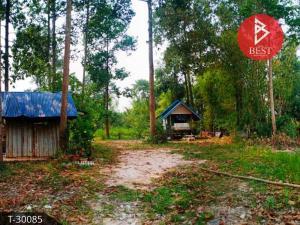 For SaleLandPrachin Buri : Land for sale with lemon garden, area of 1 rai 72 square meters, Kabin Buri District Prachinburi