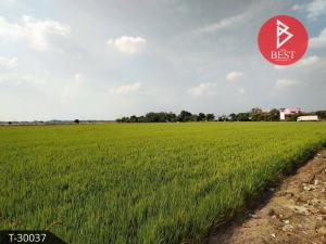 For SaleLandUbon Ratchathani : Land for sale 16 rai 1 ngan 76.0 square meters Warin Chamrap Ubon Ratchathani