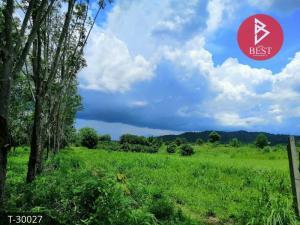 For SaleLandChanthaburi : Land for sale 15 rai, suitable for gardening Soi Dao, Chanthaburi.