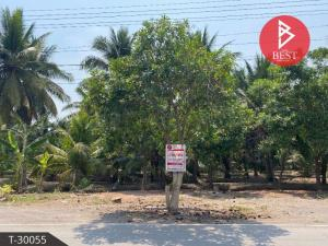 For SaleLandNana, North Nana,Sukhumvit13, Soi Nana : Land for sale 3 rai 2 ngan 36 square wah with coconut plantations, banana plantation, Samut Songkhram.