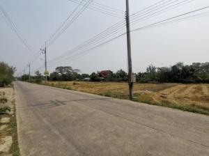For SaleLandNakhon Pathom, Phutthamonthon, Salaya : Land for sale, Dao Thong 2, Salaya Subdistrict, 257 sq m., suitable for housing, warehouse