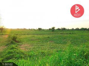 For SaleLandPattaya, Bangsaen, Chonburi : Land for sale in the area of 7 rai 1 ngan 4 square wa Phanat Nikhom, Chonburi