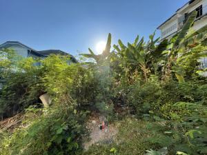For SaleLandThaphra, Wutthakat : ขาย ที่ดิน ซ. จรัญสนิทวงศ์ 4 (วัดท่าพระ) เนื้อที่ 130 ตร.ว. ใกล้รถไฟฟ้า MRT ท่าพระ เพียง 500ม. ทำเลดีเยี่ยม