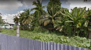 For SaleLandThaphra, Wutthakat : Land for sale on Wutthakat Road, near BTS Talat Phlu.