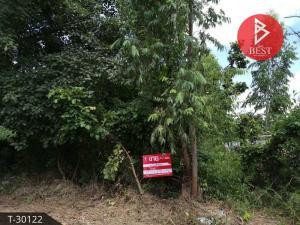 For SaleLandMaha Sarakham : Land for sale in Kantharawichai, Maha Sarakham, 183 sq m.