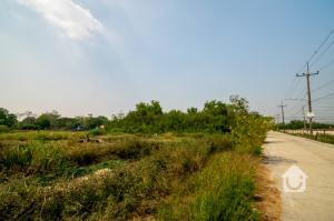 For SaleLandRangsit, Patumtani : Land for sale 2 rai 1 ngan 18 sq m then filled near Lam Luk Ka Hospital Price 8.5 million baht!