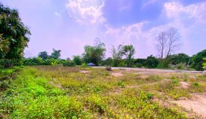 ขายที่ดินเชียงใหม่-เชียงราย : เจ้าของขายเอง ที่ดินเชียงใหม่  100 ตรว. (ด้านหน้าติดแม่น้ำ บรรยากาศดีมากๆๆ)