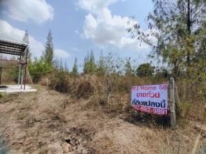 For SaleLandHua Hin, Prachuap Khiri Khan, Pran Buri : Land 200 square wah, the way to Plisa Thap Tai Rai