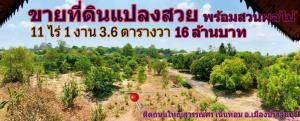 For SaleLandPrachin Buri : Beautiful Land on the main road with Fruit Farm and Large House in Prachin Buri