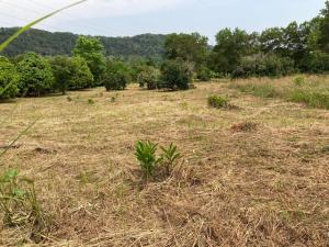 For SaleLandChanthaburi : Land for sale 14 rai 2 ngan 89 square meters, Yai Am, Chanthaburi Province, suitable for agriculture
