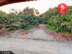 For SaleLandNawamin, Ramindra : Land for sale with buildings and longan plantation, 5 rai 32 square wa, San Pa Tong, Chiang Mai.