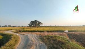 For SaleLandSuphan Buri : Land for sale 10 rai 3 ngan 87 square wa. Tha Sadet 3 Intersection 5, Sa Kaeo Subdistrict, Mueang Suphanburi District Suphanburi
