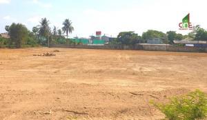 ขายที่ดินชะอำ เพชรบุรี : ขาย ที่ดิน 3 ไร่  3 งาน 81 ตรว.  ตำบลต้นมะม่วง  อำเภอเมืองเพชรบุรี   จังหวัดเพชรบุรี