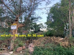 For SaleLandRama 2, Bang Khun Thian : ขายที่ดิน หมู่บ้านเอกชัยเลควิลล์ ถมแล้ว พระราม 2 ซอย 100 ( เอกชัย131 ) Ref. A01210402