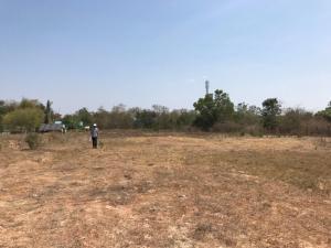 ขายที่ดินราชบุรี : ขายที่ดินเปล่า ปากท่อ ราชบุรี พื้นที่ 7 ไร่ สวยมาก