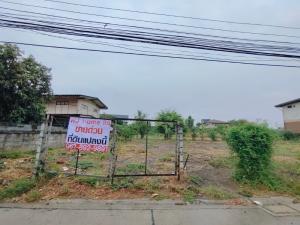 For SaleLandChengwatana, Muangthong : Urgent sale !! Land 177 square wah (filled) Soi Tiwanon 52 (Udomsap 7)