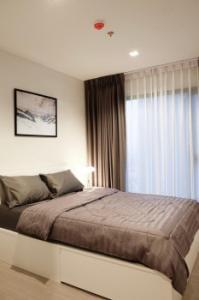 For RentCondoRama9, RCA, Petchaburi : Urgent rent, detached room, beautiful decoration, very good price, Life Asoke-Rama 9