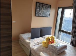 For RentCondoRatchadapisek, Huaikwang, Suttisan : Condo for rent, Centric Huai Khwang Station, 100 meters from MRT Huai Khwang