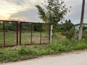 ขายที่ดินสุพรรณบุรี : ขายที่ดินสามชุกสวนผลไม้และที่ดินเปล่าสำหรับปลูกบ้าน